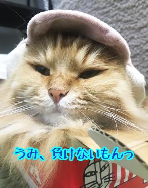 がんばれー
