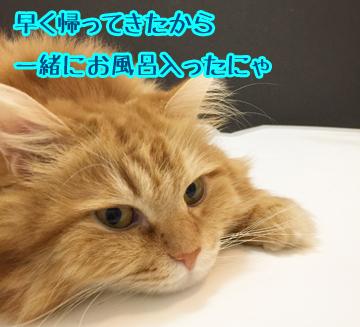うみと風呂〜